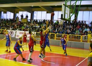 sportig1